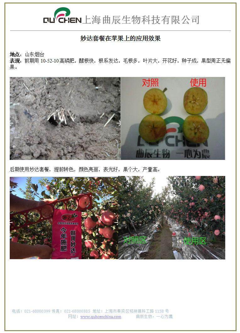 苹果案例.jpg
